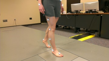Participants wanted: Muscle fatigue and walking biomechanics