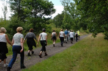 Participants wanted: Knee Osteoarthritis walking program